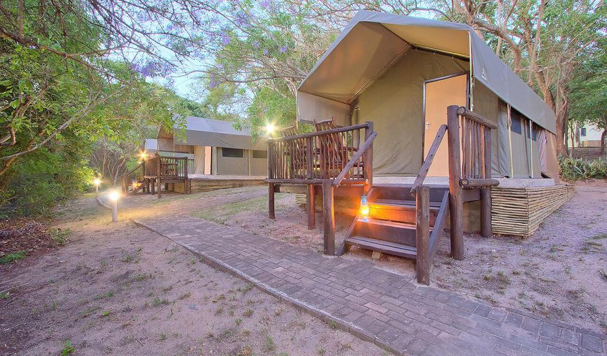 Welcome to Boteti Tented Safari Lodge in Maun, North West District, Botswana