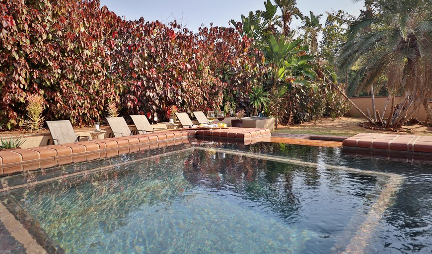 Timeless Lodge features an outdoor swimming pool