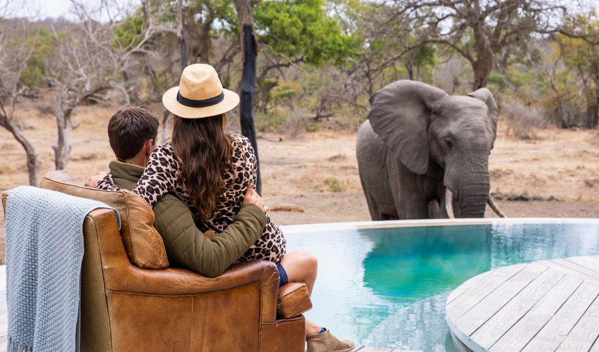 Welcome to Thornybush River Lodge in Thornybush Game  Reserve, Mpumalanga, South Africa