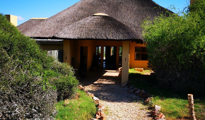 Welcome to Blaauwbosch Private Game Reserve in Uitenhage, Eastern Cape, South Africa
