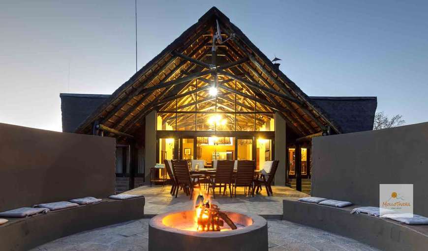 Welcome to MolloThaba Private Family Lodge in Black Rhino Game Reserve, Pilanesberg, North West Province, South Africa