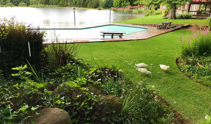 Lakeside Chalets Critchley Hackle Lodge Dullstroom features a stunning garden and outdoor swimming pool