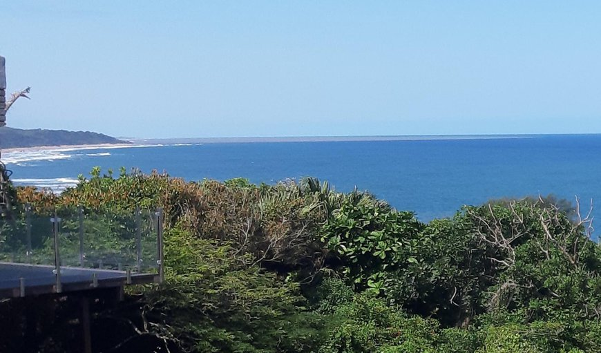 Welcome to Ocean Rush! in Zinkwazi Beach, KwaZulu-Natal, South Africa
