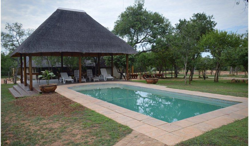 Welcome to Klavati Game Lodge in Hoedspruit, Limpopo, South Africa