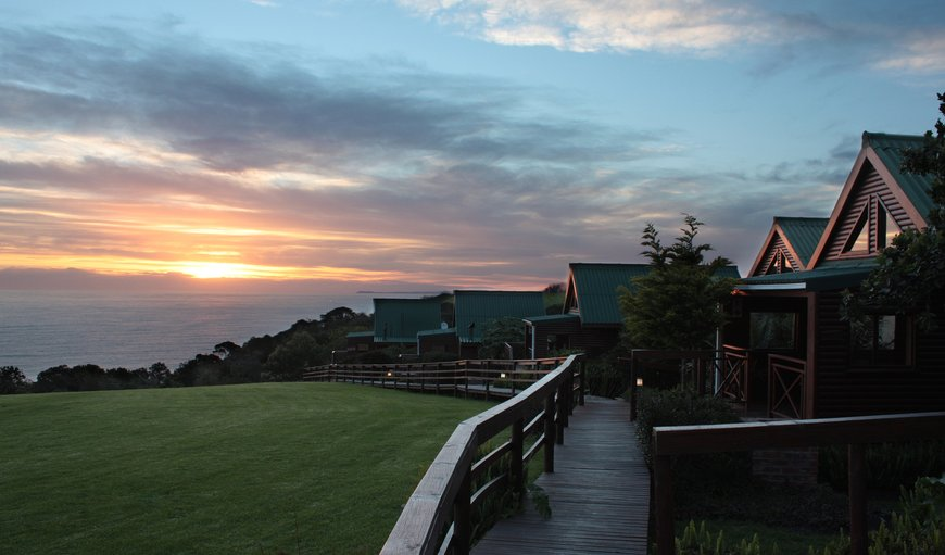Ocean View Wooden Lodges comprising of honeymoon, self catering, family and standard. in Bluelillies Bush, Tsitsikamma, Eastern Cape, South Africa