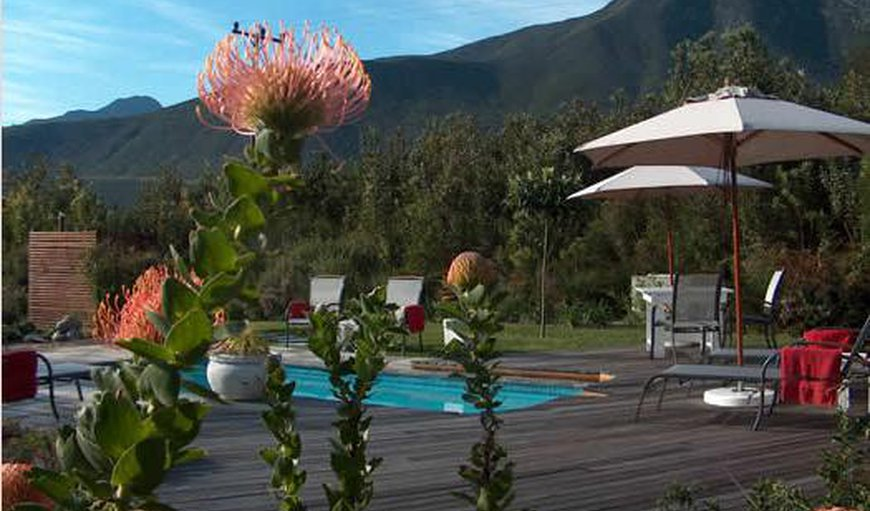 Armagh Country Lodge & Spa in Storms River, Eastern Cape, South Africa