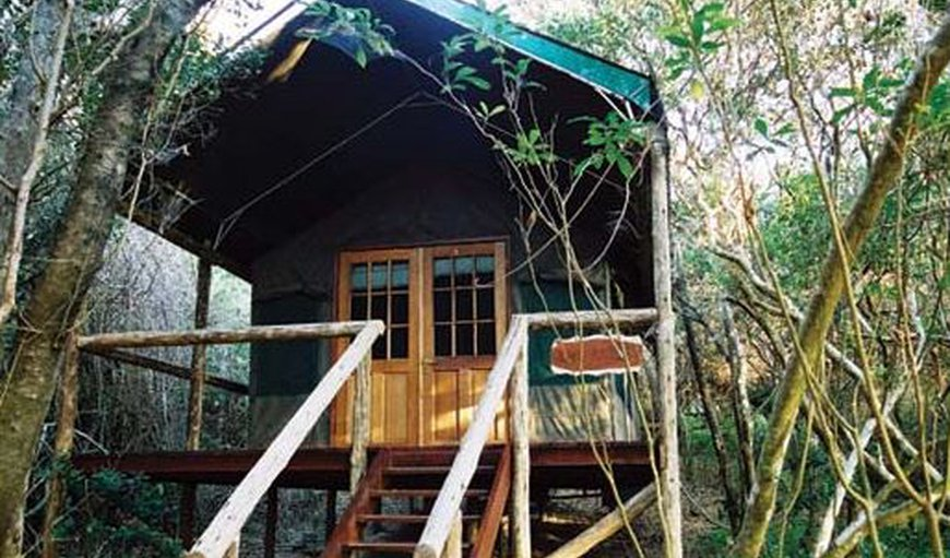 Tartaruga Luxury Tented Camp in Ponta do Ouro, Maputo Province, Mozambique