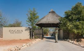 Ongava Tented Camp image