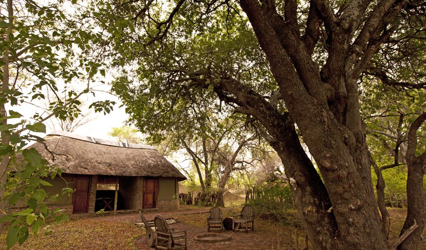Limpopo River Lodge in Tuli Block , Central District , Botswana