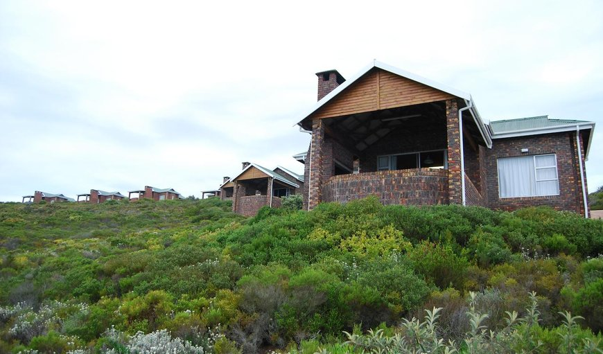 Blue Whale Resort in George, Western Cape, South Africa