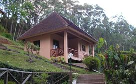 Vakona Forest Lodge image
