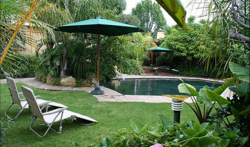 Garden / Swimming Pool area
