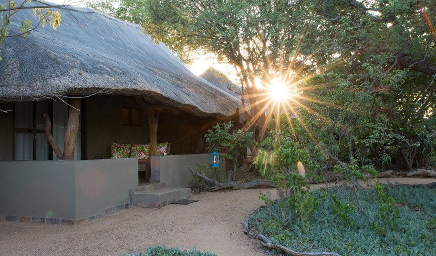 Kambaku Safari Lodge consists of 7 thatched, en-suite chalets that are situated in a semi-circle overlooking a beautiful waterhole.
