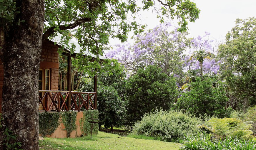 Welcome to Willows Lodge in Malkerns, Swaziland, Swaziland, Swaziland