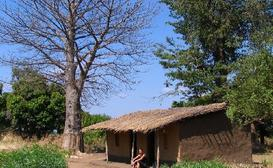 Njobvu Cultural Village Lodge image