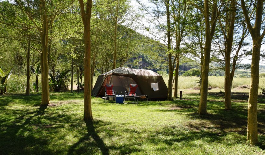 Wellvale Resort camp-site