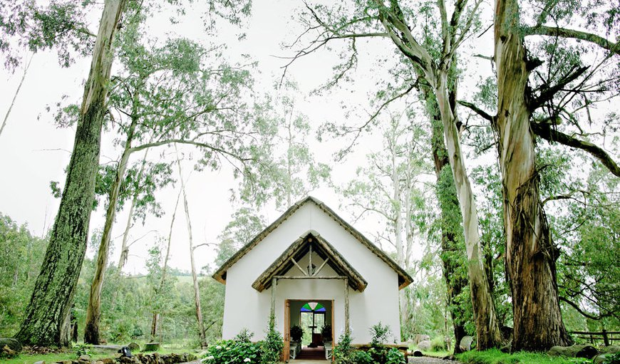 The Chapel is nestled in our enchanting forest of trees in Currys Post, KwaZulu-Natal, South Africa