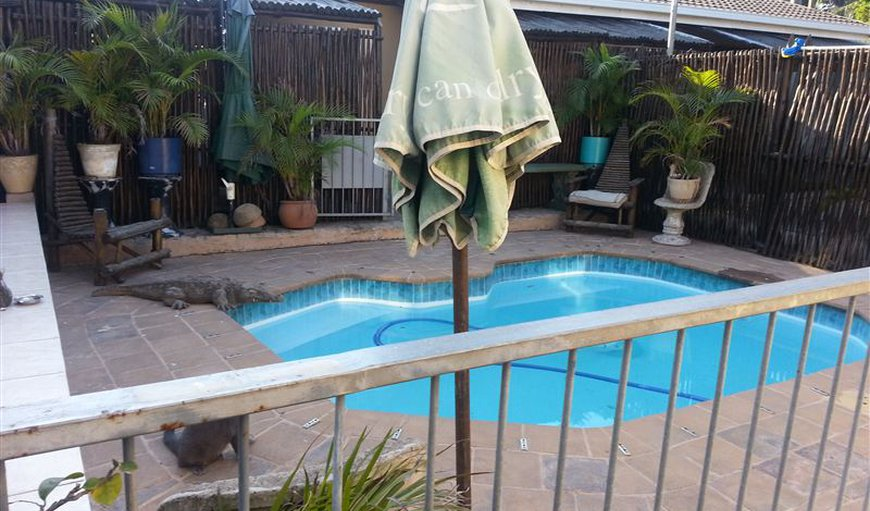 A Family and Friends Guest House in Bluff, Durban, KwaZulu-Natal , South Africa