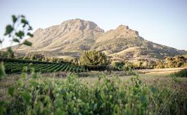 Le Pommier Wine Estate image