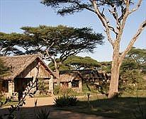 Ndutu Lodge image