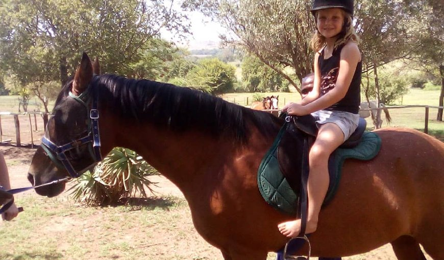 Pony rides kids 4-12 years old in Magaliesburg, Gauteng, South Africa