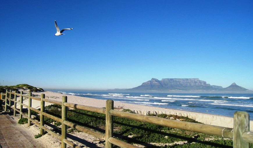Dolphin Inn is only 2 min. walk from this promenade at the Table View / Blouberg Beachfront