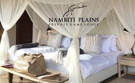 Nambiti Plains Private Game Lodge image