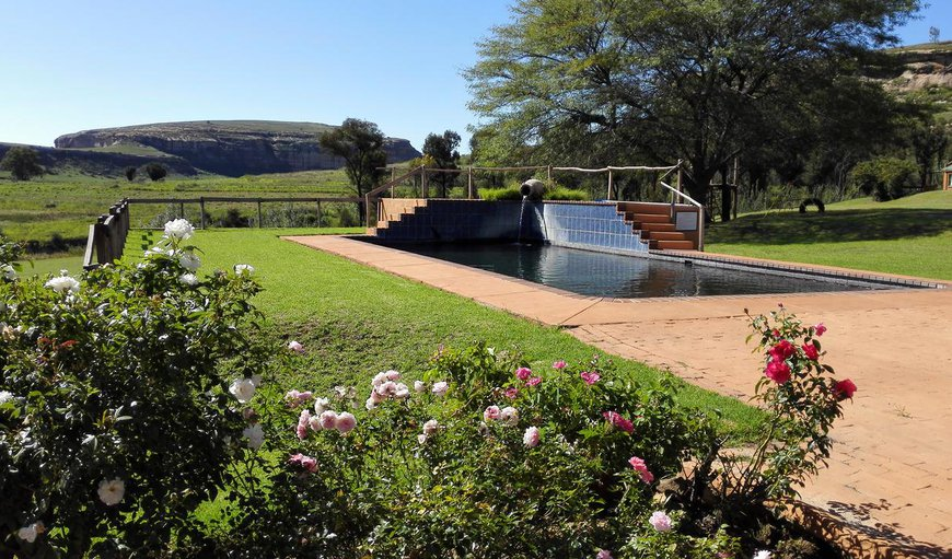 Swimming pool in Fouriesburg, Free State Province, South Africa