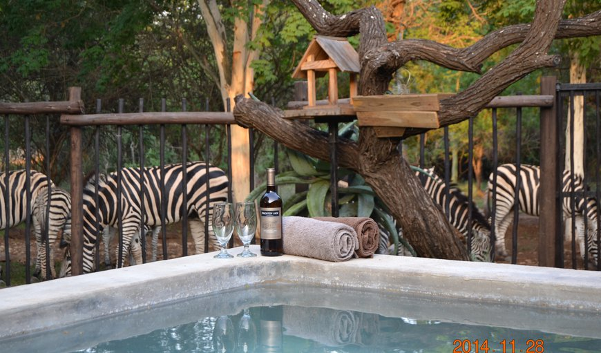Relax in the Bush Jacuzzi