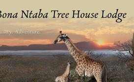Bona Ntaba Tree House Lodge image